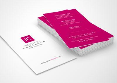 Carte Intervetion Caméléon